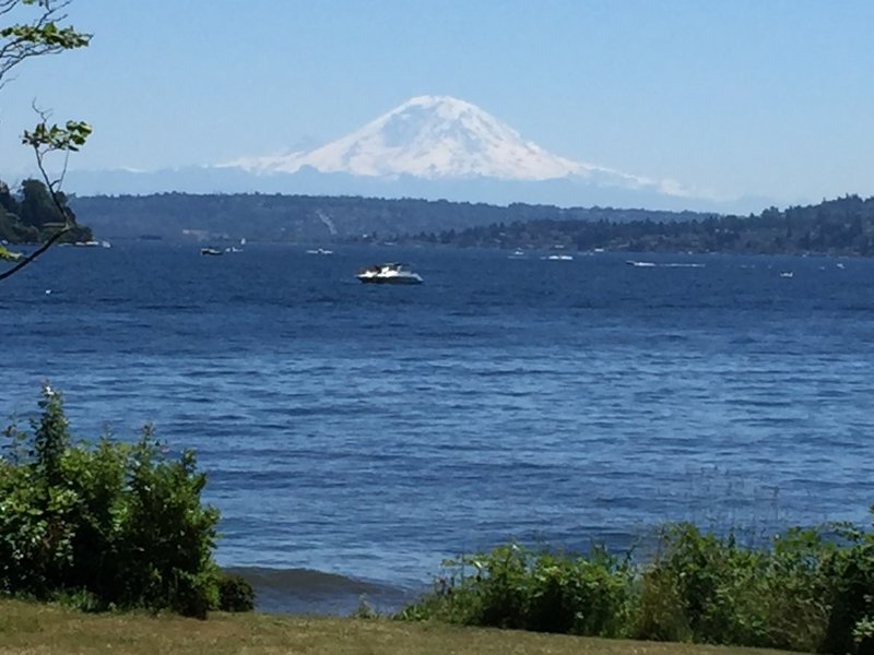 Looking south from the kid's playground, enjoy incredible views of Rainier on a summer day.