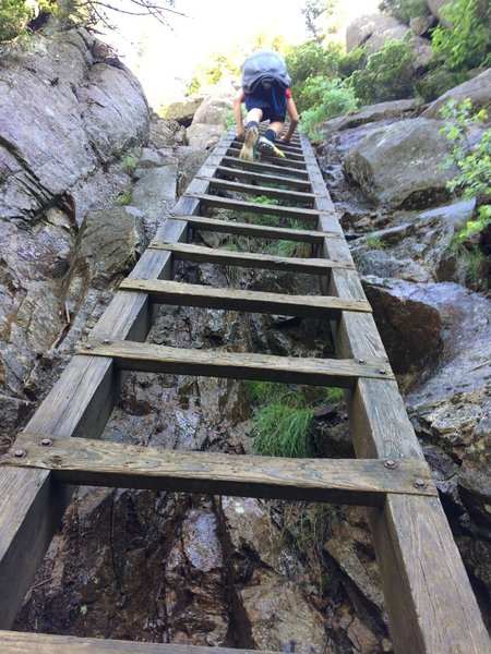 Use the ladder to scale the rock wall just before the summit of Crane Mountain.