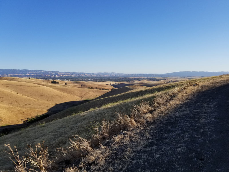 You can see Livermore in the distance from the Brushy Peak Loop Trail.