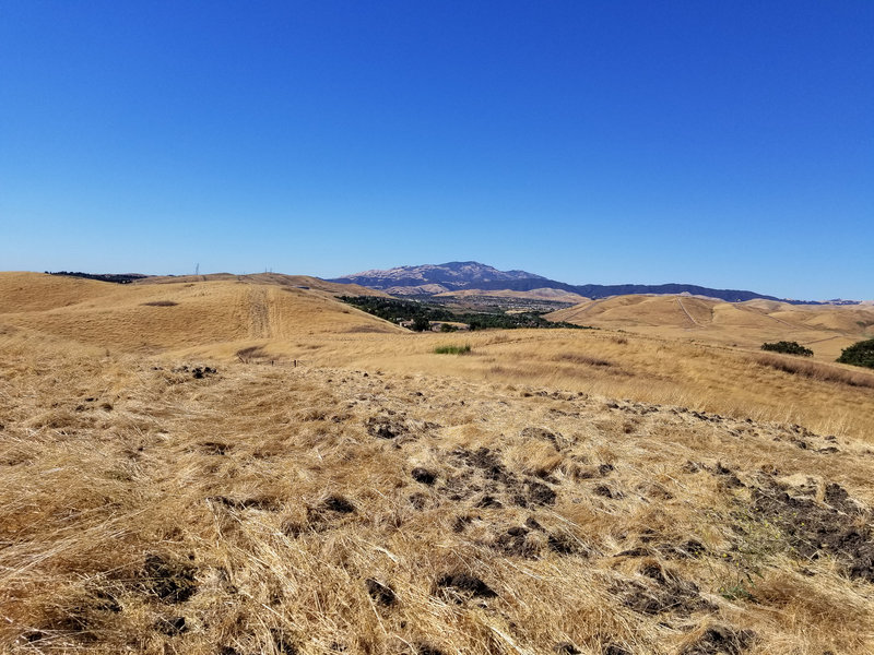 Mount Diablo can be seen far off in the distance.