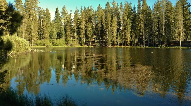 Reflection Lake is stunningly beautiful in the afternoon light.