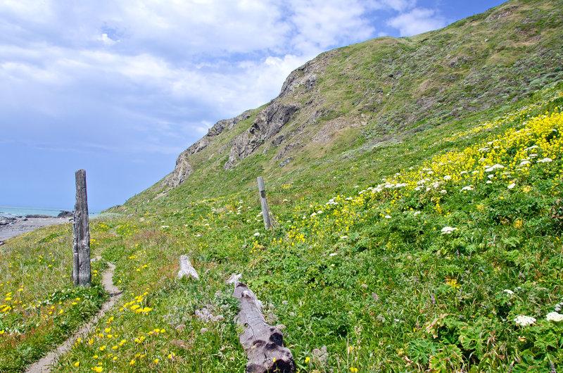 The Lost Coast Trail - Punta Gorda.