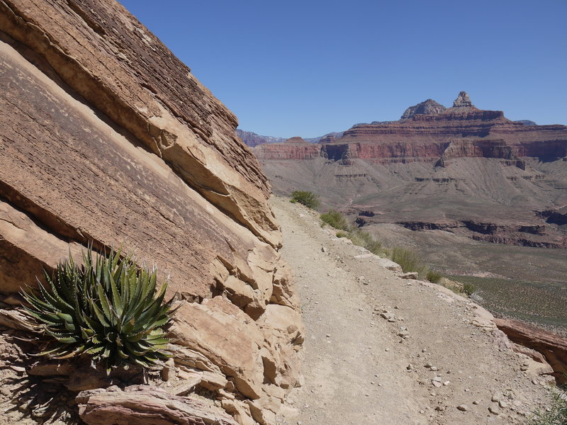The South Kaibab Trail turns to reveal the Zoroaster Temple.