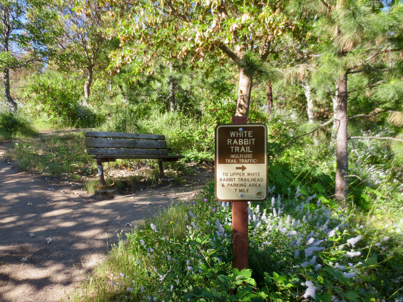 This is one of several White Rabbit Trail benches near the Mike Uhtoff Trail.
