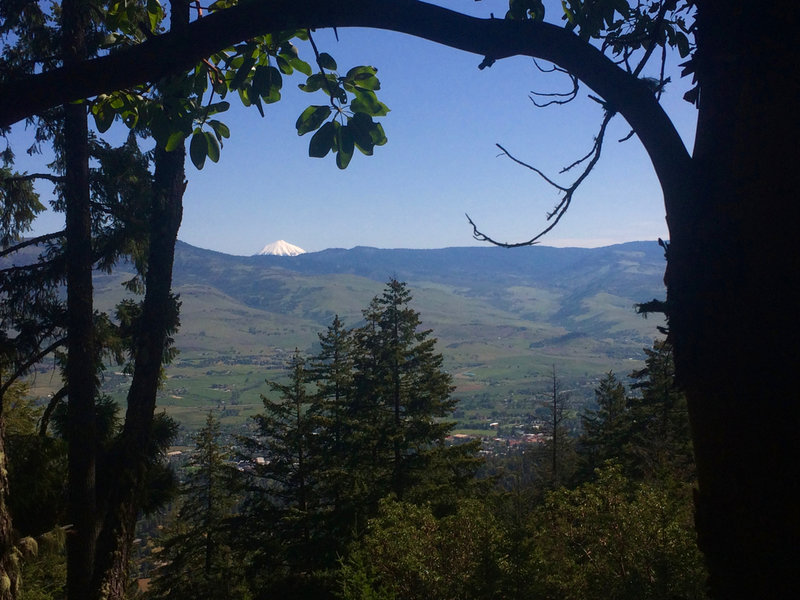 Mt. McLoughlin stands far in the distance from this viewpoint on the Fell on Knee Trail.