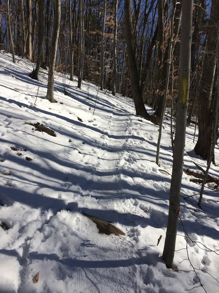 The great trail running fun does not end with winter. Bring the snowshoes or microspikes.