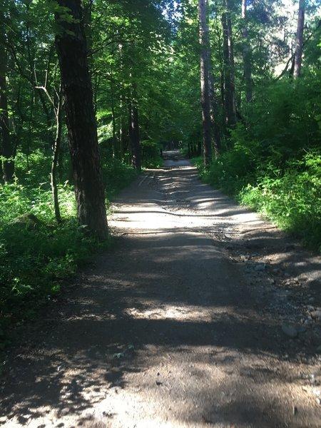 Trail from Knyazhevo.