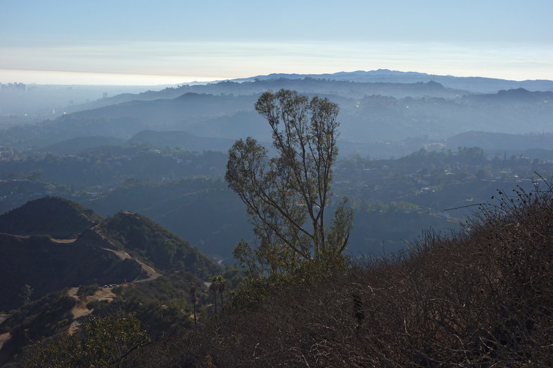The Los Angeles Foothills get lost in the late-afternoon haze.
