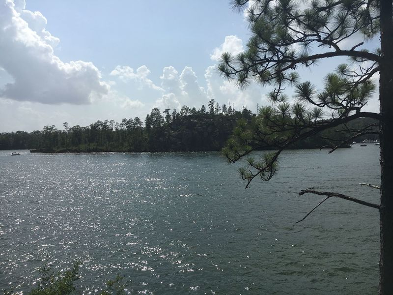 Lake Martin and Chimney Rock Island can be seen right from the trail.