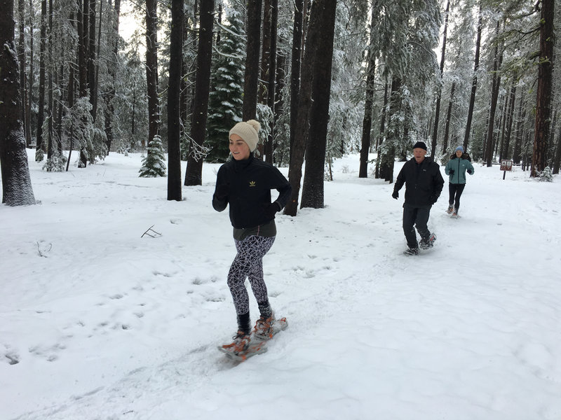 Donner Memorial State Park is open for snowshoe running in the winter