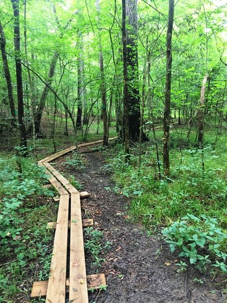 This swampy lowland crossing is made easier with a wooden boardwalk.