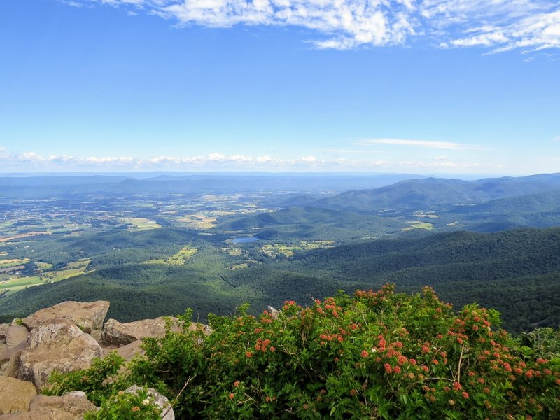 It's almost unfair to not have to work for this view from Stony Man Summit in Shenandoah National Park.