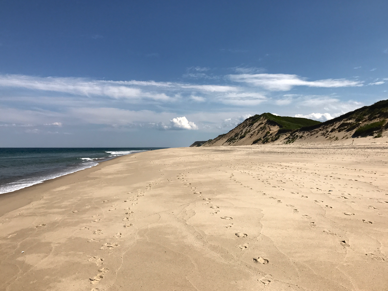 Walking the Great Beach is a must-do on any visit to the Cape.