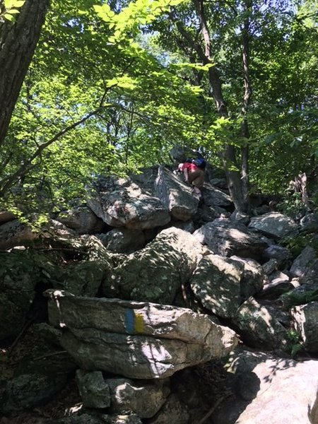 This is on the Golden Eagle/Skyline Trail. This is the first spot on the upper east side about a half mile after you get on the Skyline Trail that includes big boulders you must scramble over.