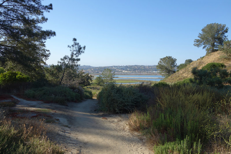 The trail through Crest Canyon approaches the San Dieguito Lagoon.