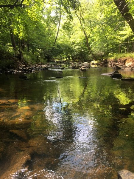 Calm waters meander on the North Fork Little River.