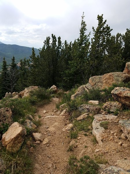 The trail heads down just below the summit of Mount Rosa.