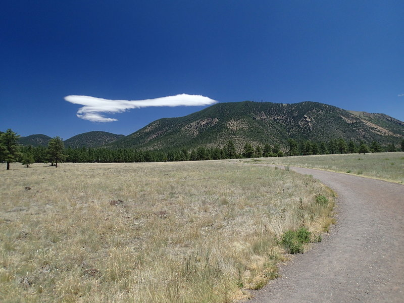 The Buffalo Park Loop Trail is a wide foot path offering gorgeous views.