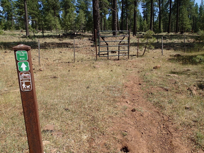 Pass through this cattle gate to remain on the Two-Spot Trail.