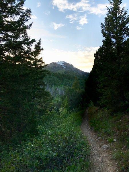 The Jardine Juniper Trail is phenomenal just before sunset!