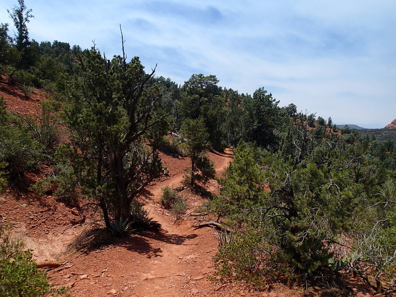 The Cibola Pass Trail traverses Sedona's characteristic red dirt and scrub vegetation.