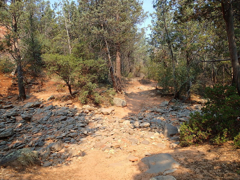 The trail crosses a dry creek bed several times.