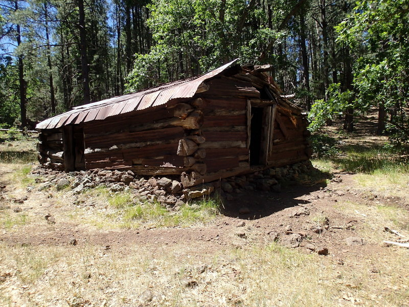 This old winter cabin barely stands along the Hog Hill Trail.