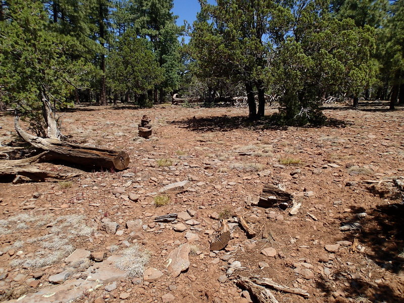 Occasional cairns can be found along the trail, but do not rely on them for navigation.