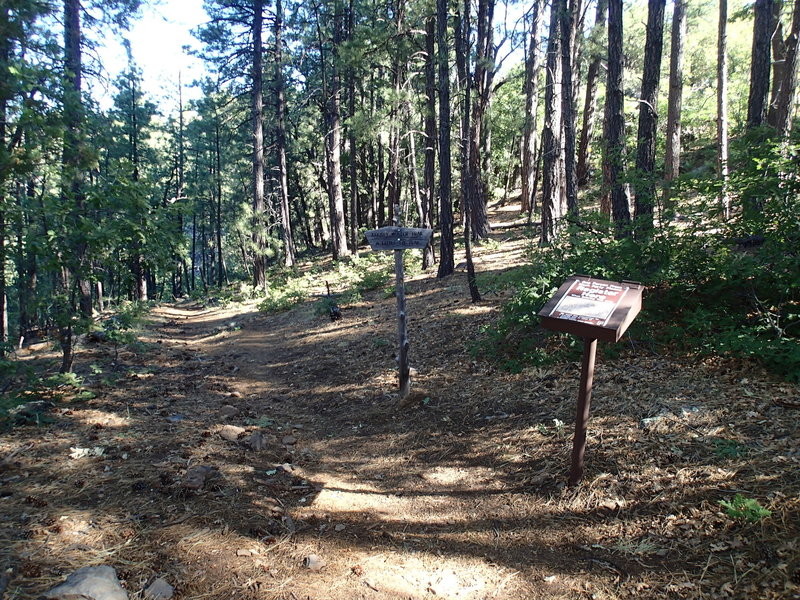 This is the Kelsey Spring Trailhead.