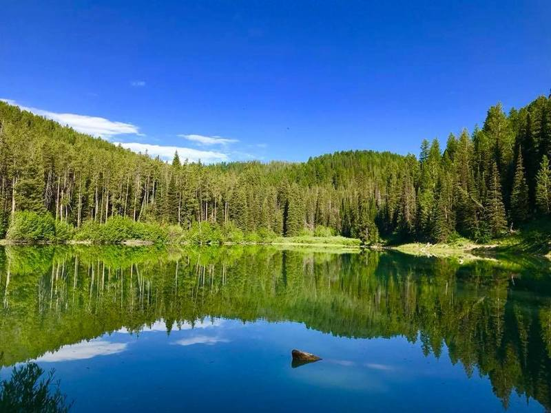 Packsaddle Lake can be as still as a mirror.
