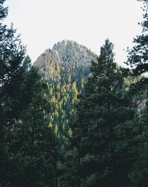Enjoy a great view of Stove Mountain (9782 ft.) from St. Mary Falls Trail.