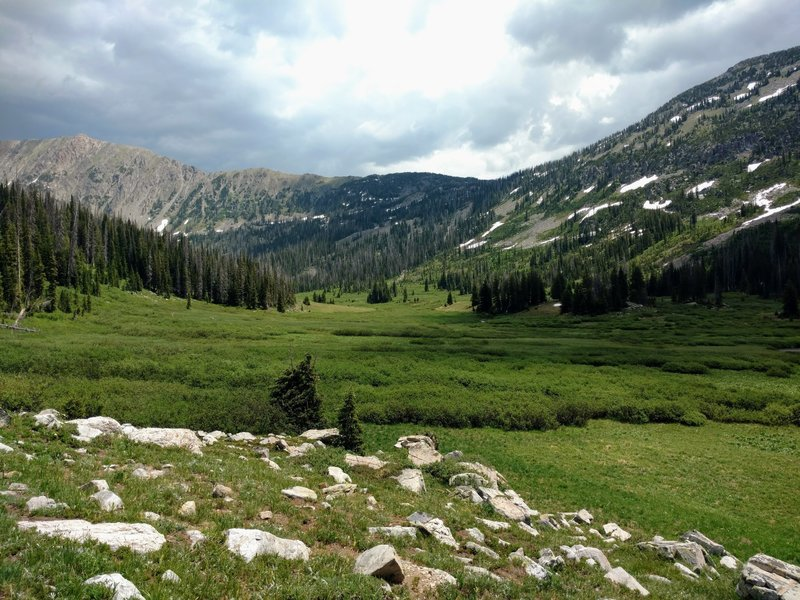 The lush lower Gold Creek meadows.