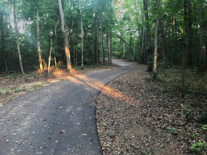 Charles Lollis Memorial Trail.
