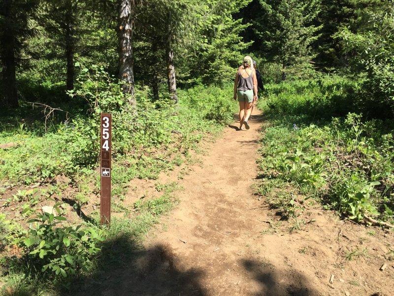 Start of Goose Creek Falls Trail.