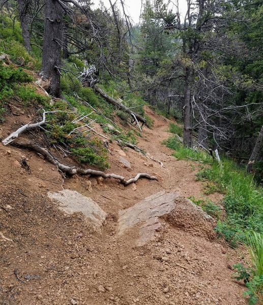 Arduous section of the trail with cascading water from North Cheyenne Creek alongside.