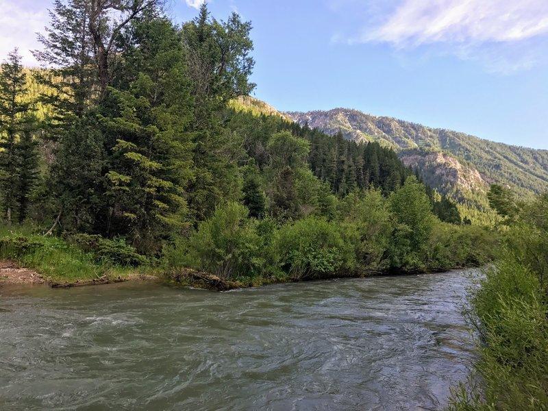 Dry Canyon Trail creek crossing