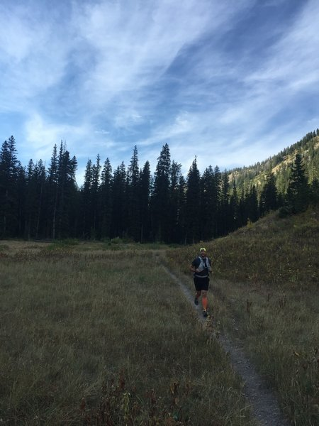 The start of the middle section of Waterfall Canyon that is primarily flat and easy to run.