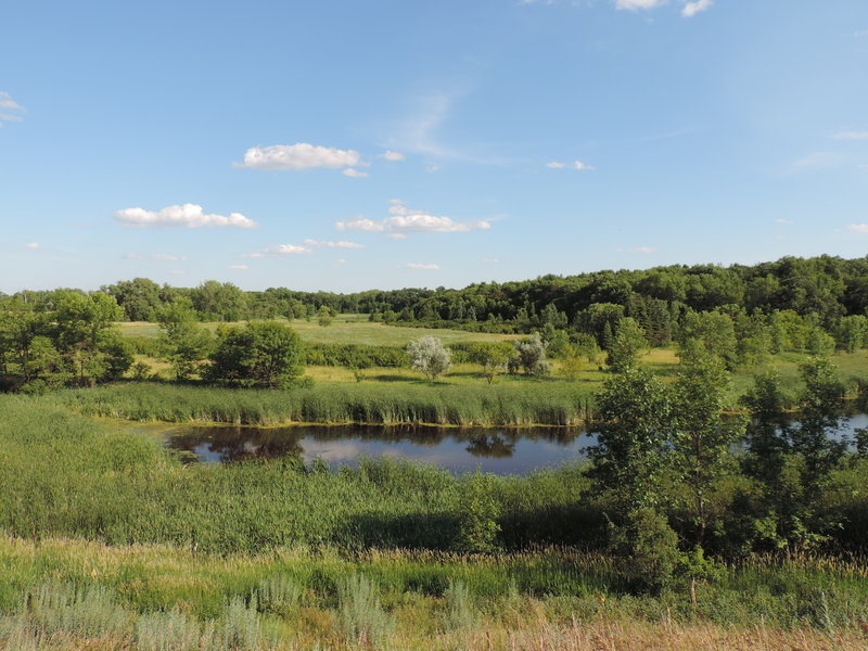 A beautiful view of the marshes, and the adjacent hilltop.