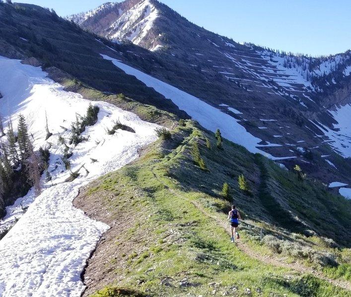 Running the ridge on the Cascade Saddle