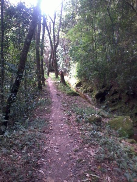 Matinha Trail