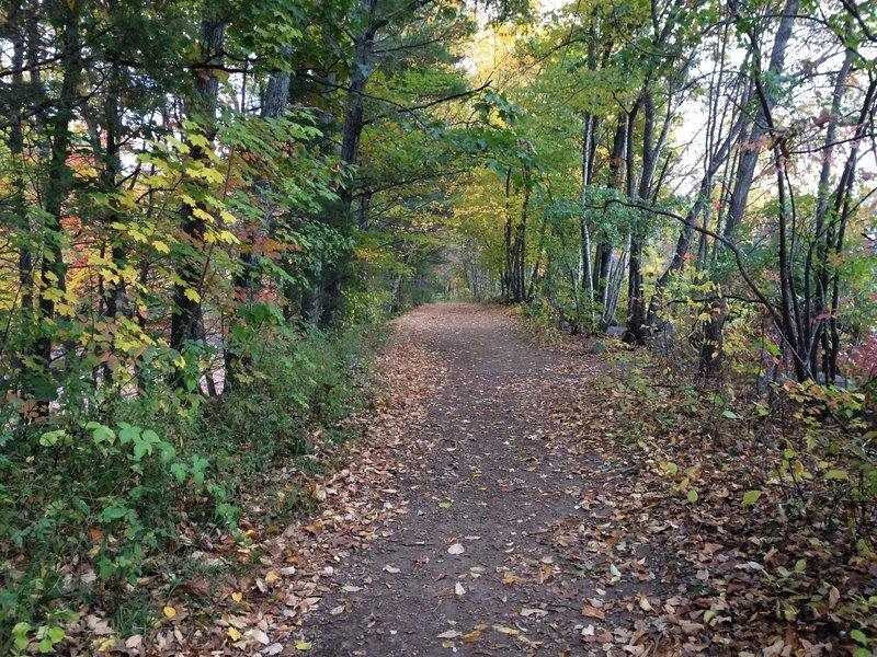 Tote Road Trail.