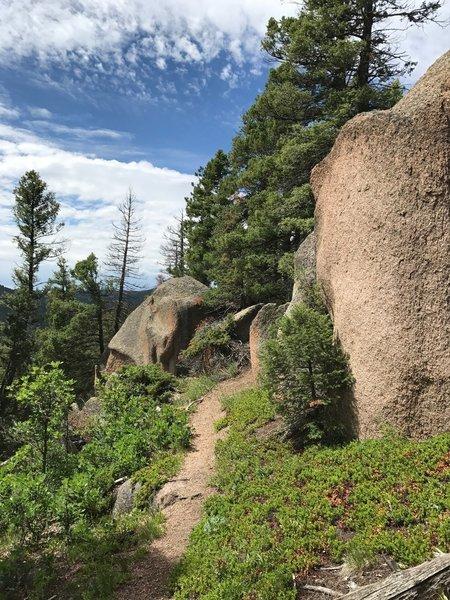 Chautauqua Trail along the ridge near the boulder outcroppings at mile 1.7