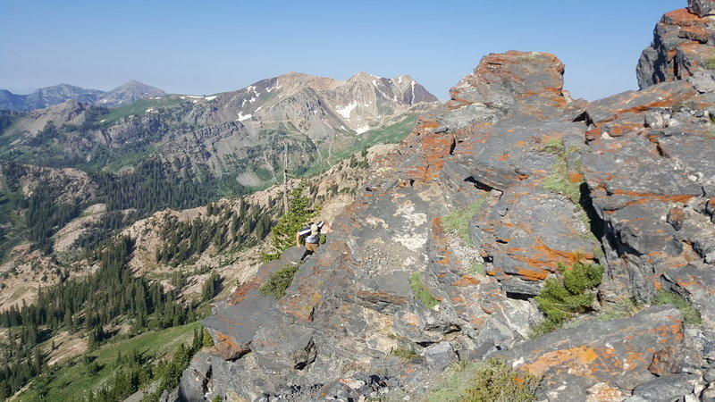 This is the ridge leading to Devil's Castle, on the right outside the frame is a cliff leading down to Alta Ski Resort, the view on the left is the top of American Fork Canyon.