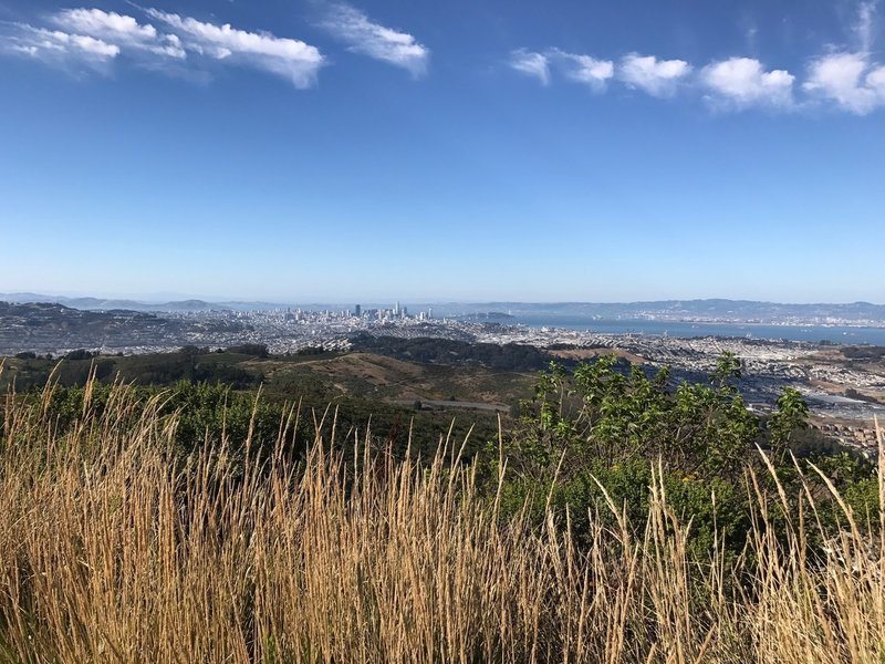 View of the city from the top of San Bruno Mountain
