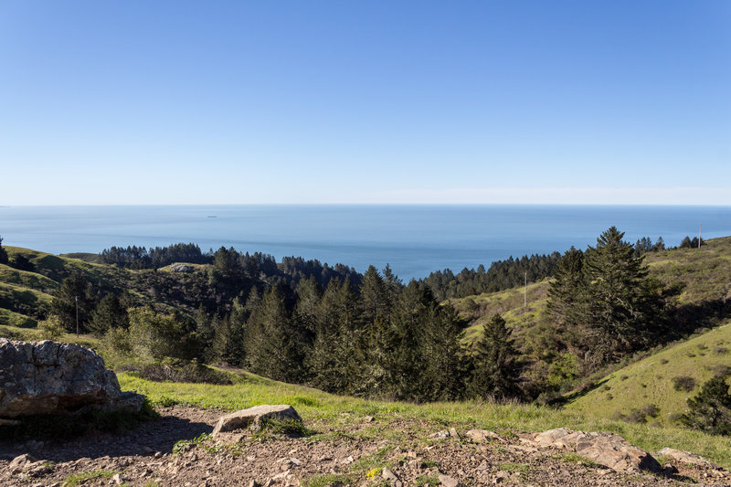 Coastal view from Dipsea Trail