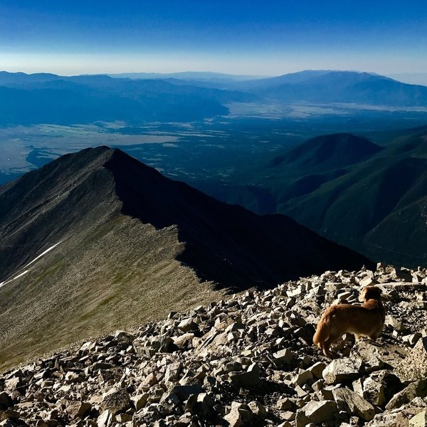 Mt. Princeton Summit view of Tigger Peak