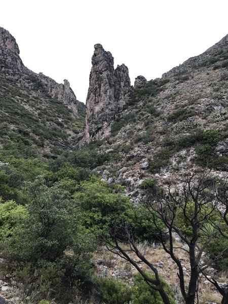 Yucca Canyon Trail in July