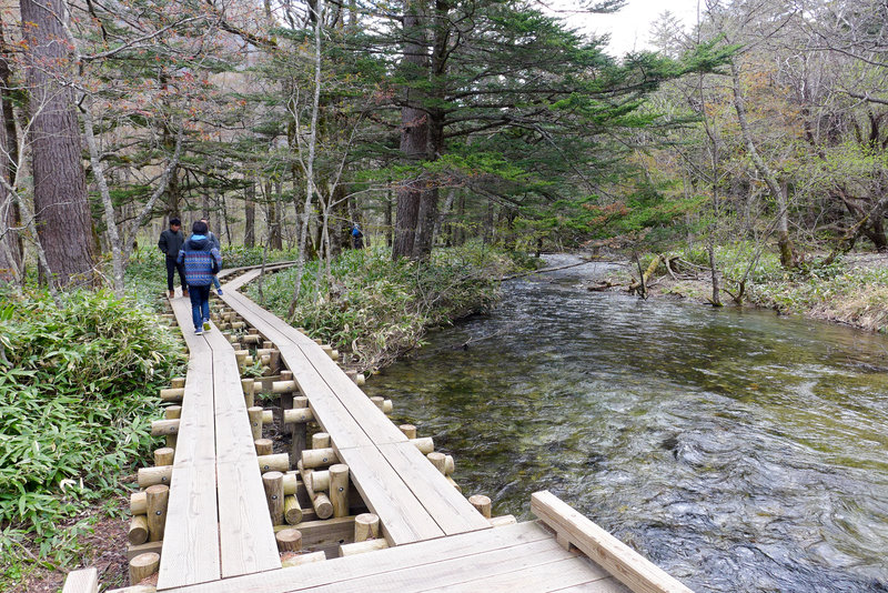 Elevated path keeps you dry over the babbling creek.