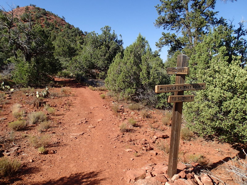 Trail to summit of Little Sugarloaf