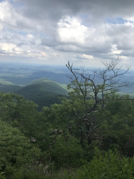 View from just below the summit of Rabun Bald on the Three Forks Trail.